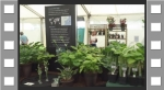 Our display at Tatton 2016